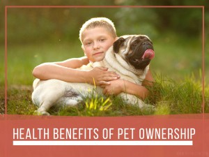 Dogs 32 - Health benefits of pet ownership